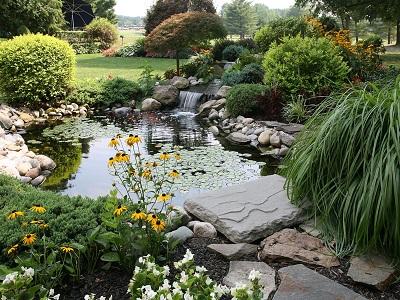 iStock 157329538%20MC%20cjmckendry%20paint La phytoépuration : une solution écologique pour l'assainissement individuel des eaux usées