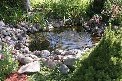 iStock 171211899MCOKiStock.comWoodenDinosaur  Réaliser un  bassin de jardin