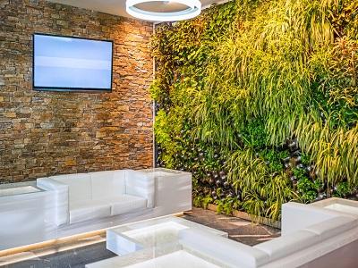 iStock 522312725%20mur%20vgtal%20MC%20paint1 Réaliser un mur végétal d'intérieur